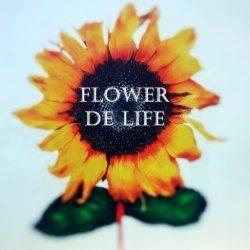 Flower De Life